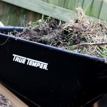 Garden: Mittleider Method
