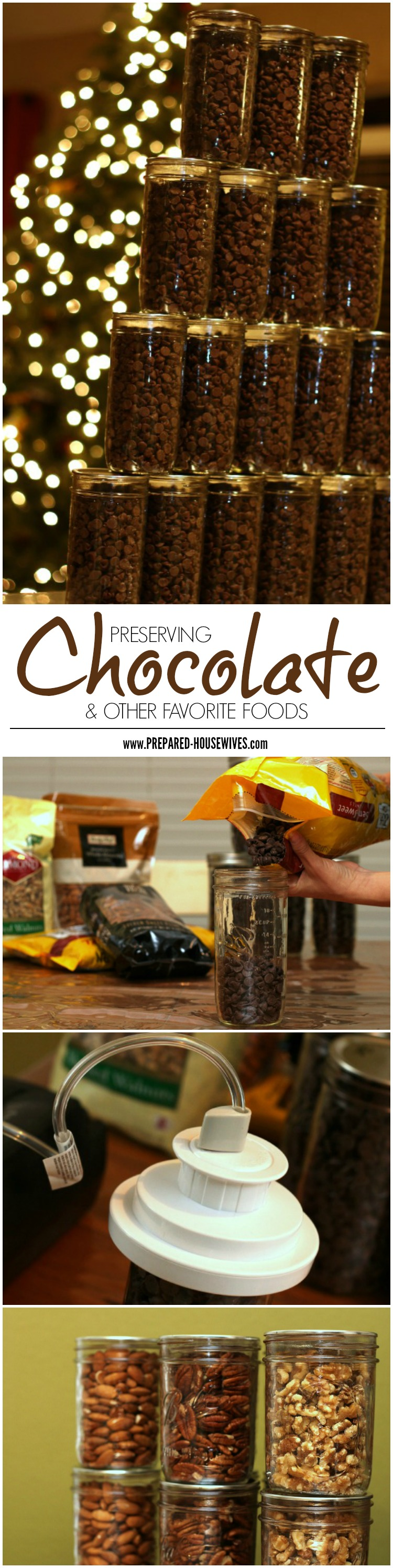 Preserving Favorite Foods - Chocolate, Cheetos, Nuts, & More!