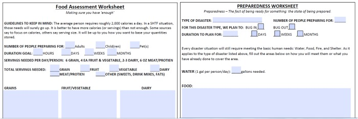 preparedness food assessement worksheets