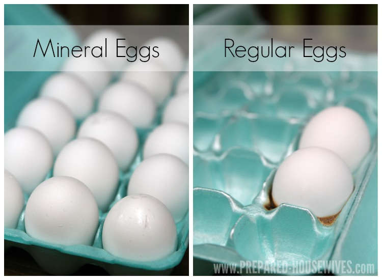 Mineral Eggs vs Regular Eggs