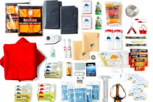 Fire, Car, Pets & Kids – There's an Emergency Kit for That!