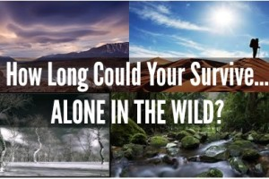 How Long Could You Survive… Alone in the Wild?