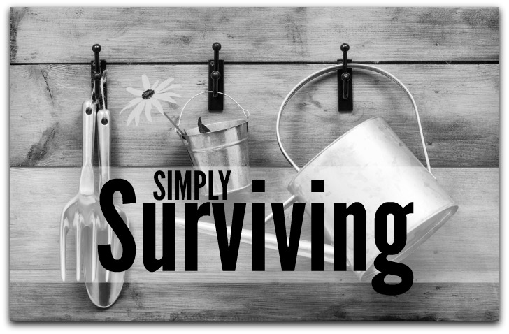 simply surviving prepared housewives