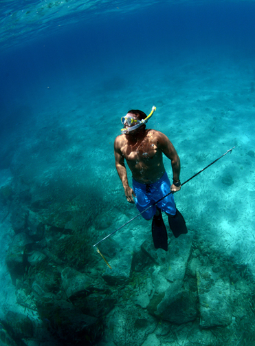 Spearfishing (underwater survival): What you need to know to get started!