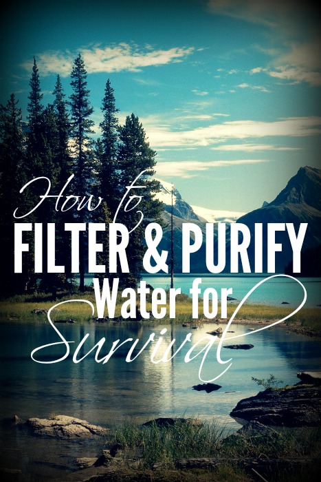 How to Filter and Purify Water for Survial