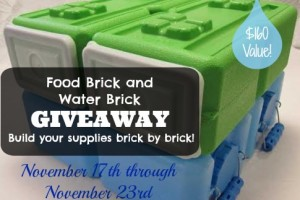 Food Brick and Water Brick Giveaway!
