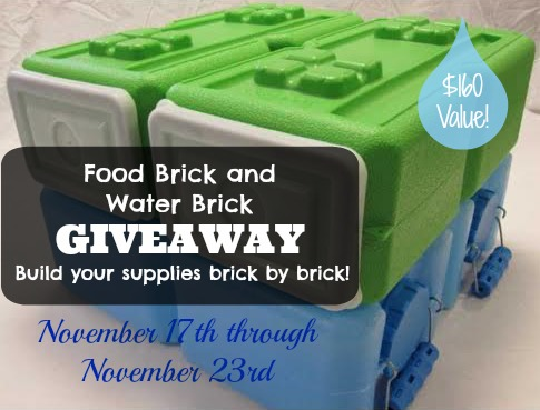 Food Brick and Water Brick Giveaway