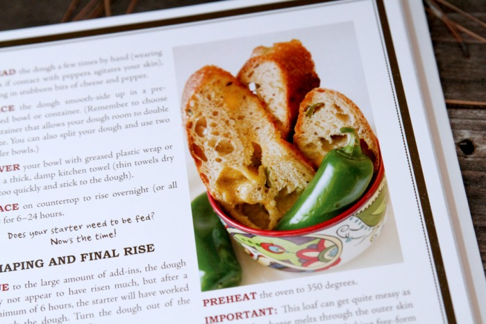 Jalepeno Cheddar Sourdough Bread