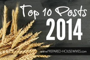 Best of Prepared Housewives: Top 10 Preparedness Posts of 2014